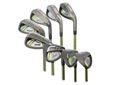 Forgan IWD2 Stainless Steel Individual Irons