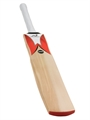 Woodworm Cricket Fireworm Performance Bat